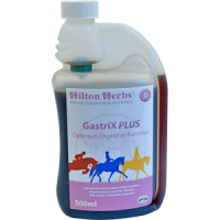 Hilton Herbs Gastrix plus 500 ml